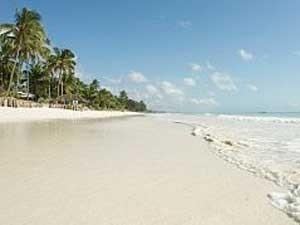 Weißer, palmengesäumter Strand von Sansibar
