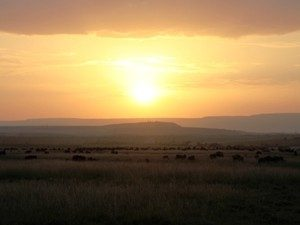 Sonnenuntergang über der Savanne Kenias - Kenia Tansania Rundreise