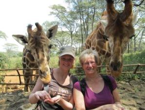 Giraffen werden aus der hand gefüttert und schauen über die Schulter - Kenia Tansania Rundreise