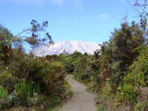 Mount Meru Besteigung Tansania Berge