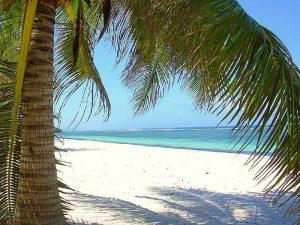 Traumhafte Strände in Diani Beach