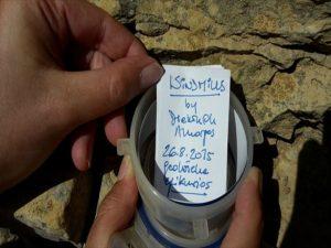 Geocaching Amorgos