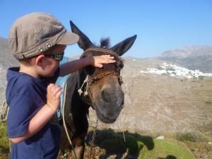 Ezel Griekenland met kinderen
