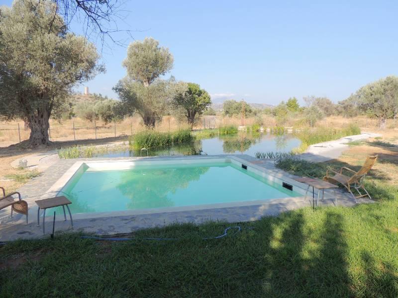 Evia met kinderen zwembad bij je guesthouse