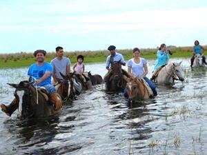 Mit den Pferden durch den See