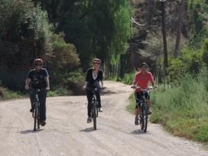 fahrrad-tour-durch-weinregion