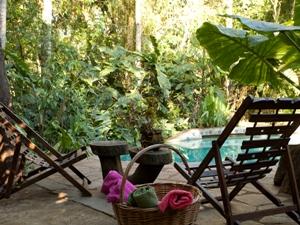 Der tropische Garten mit Pool