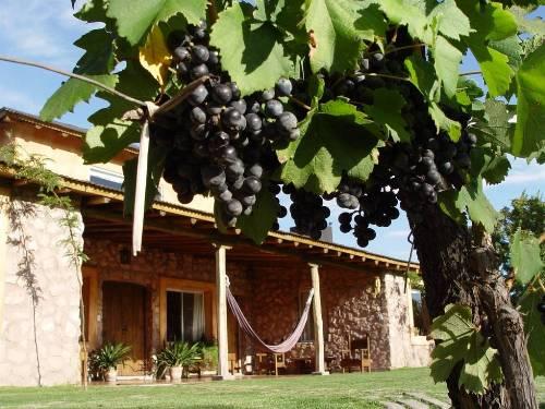 Gartenanlage Komfortunterkunft Mendoza