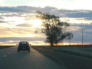 Mietwagenrundreise Roadtrip Argentinien Península Valdés
