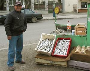 Fischverkäufer Punta Arenas Argentinien Chile Rundreise