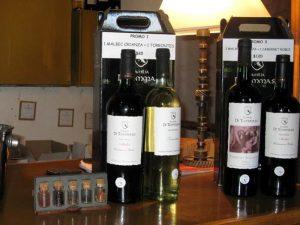 Weinbrobe in Mendoza
