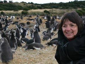 reisende-vor-pinguinen