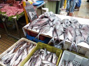 Marktbesuch in Valparaiso