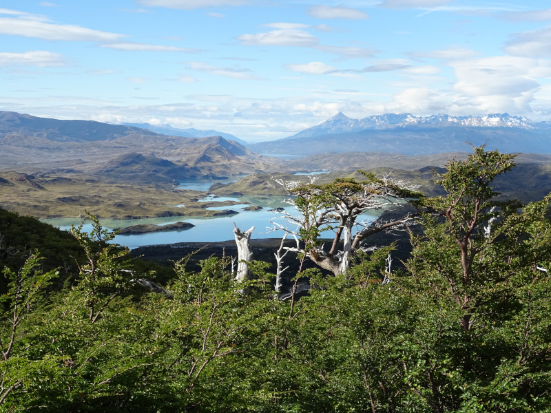 chile-highlights-torres-del-paine