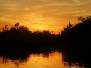 Sonnenaufgang bei der Bootstour entlang der Wetlands