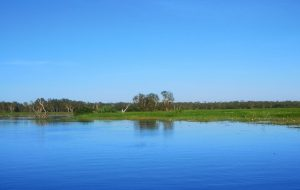 Bootstour entlang der Wetlands
