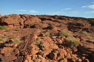 Kings Canyon im Outback