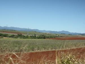 Die Weite der Atherton Tablelands in Australien