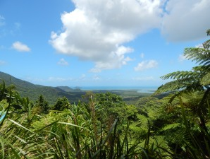 Die Aussicht in Cape Tribulation