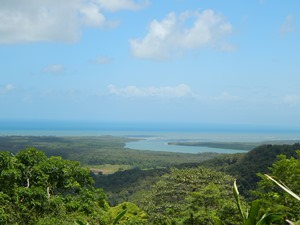 Cape Tribulation und Daintree Regenwald