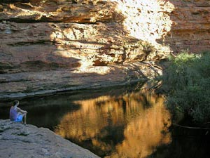 Oase im Kings Canyon
