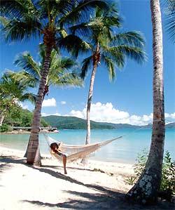 Eine Hängematte gespannt zwischen zwei Palmen