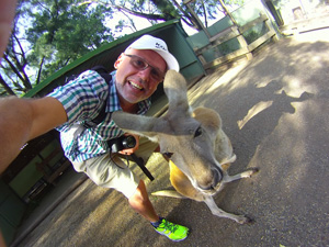 kangaroo-fetherdale-wachtel