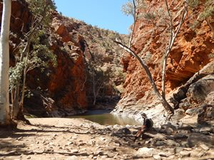 Outback, pur in den West MacDonnell Ranges