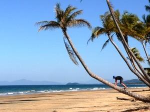 Mission Beach mit palmengesäumten Stränden, ein Highlight Australiens
