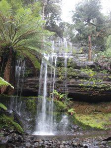 Wasserfall auf der Tasmanien Reise