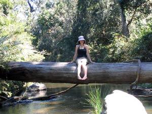 Frau sitzt auf einem umgestürzten Baum