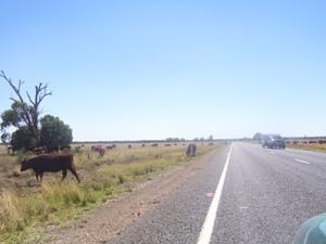 Das Hinterland Australiens