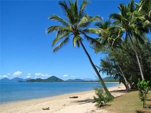 Der entspannte Palmenstrand von Palm Cove