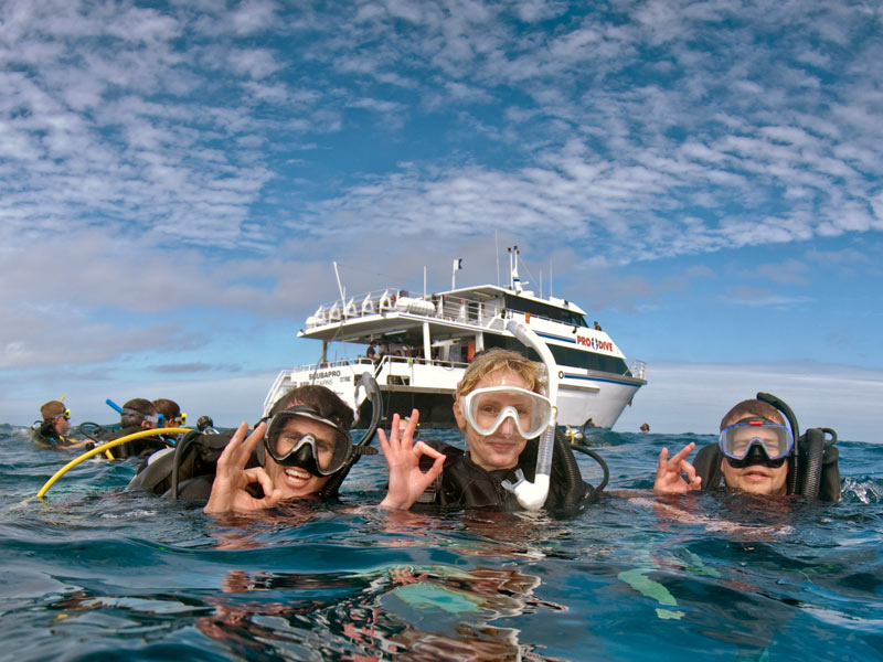 Rundreise Australien Tauchausflug Bootstour