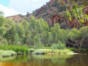 Ellery Creek im Zentrum Australiens
