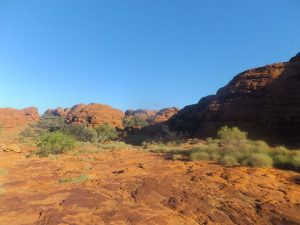 reisebericht-kings-canyon
