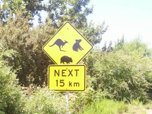 Ein typisches Straßenschild Australiens