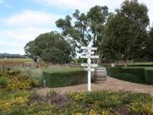 weinbau-australien