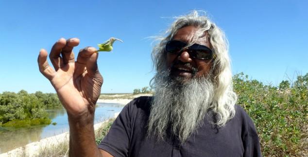 Aborigine im australischen Busch