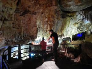 Ngilgi Cave mit Guide