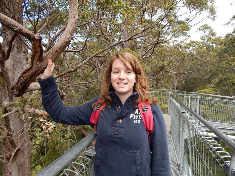Treetop Walk Walepole