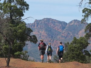 Unterwegs in den Flinders Ranges