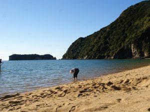 abel-tasman-strand - Rundreise Australien Neuseeland