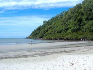 cape-tribulation-beach - Rundreise Australien Neuseeland