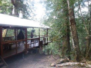 Lodge im Regenwald