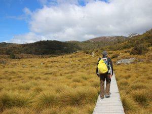 Dove Lake Wanderung in Tasmanien