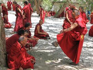 tibet lhasa debatterende monniken