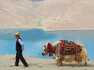 tibet yamdrok tso