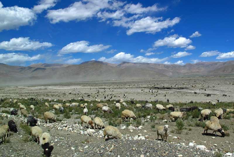 Tibet vakantie - landschap