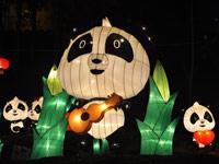 verlichte panda in china